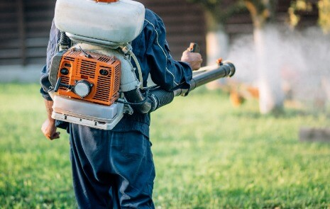 Professional Lawn Pest Service in Elkhart, IN
